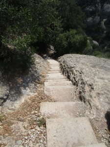 Steep stairs...how did I not fall down these?