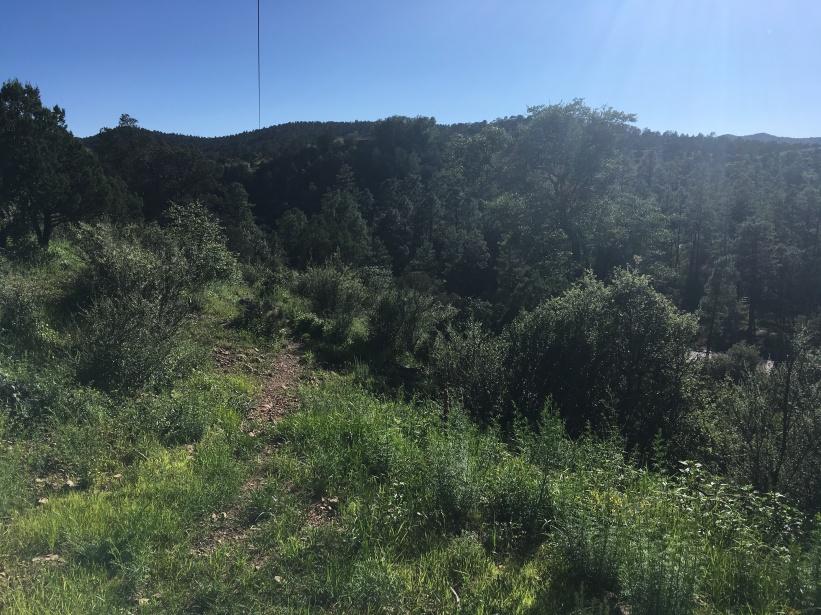 Hiking in Prescott looks a lot like WV