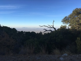 From Kitt Peak