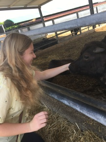 Petting the good girls